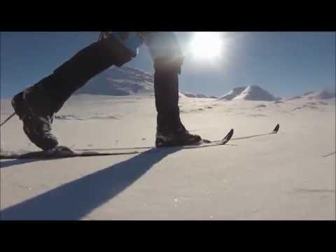 Backcountry skiing in Swedish Lapland - Arctic Adventure