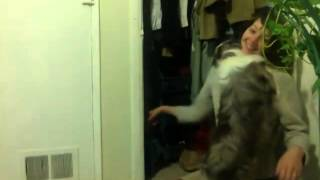 dog afraid of monsters in the closet CUTE!