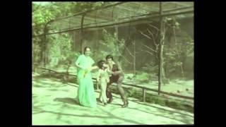 Albera Mousam Kehta hai Swagatam  | Songs | Tofha [Hindi ]