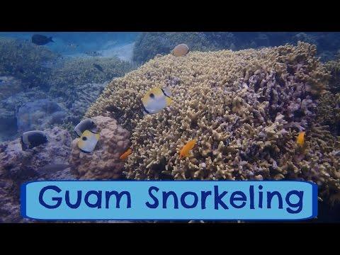 Что такое снорклинг? | Снорклинг на Гуаме | Подводный мир Гуама