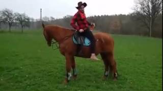 On the Horse with Bulleit