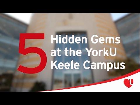 5 Hidden YorkU Gems (Keele Campus)