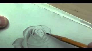 Рисуем розу карандашом | Crash ROSE #11(Рисование, как рисовать, рисовать карандашом, научиться рисовать, уроки рисования, как научиться рисовать,..., 2015-10-04T17:06:29.000Z)