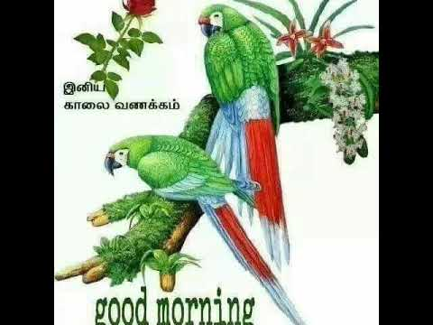 Vennila siragadika - Good morning song - Whatsapp status - Tamil cut song - Ringtones