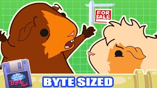"Responding to Signs in ""Signage"" - (Guinea Something Good Byte-Sized #26)"