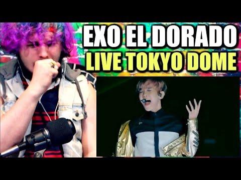 EXO - EL DORADO (EXO'luXion live in Tokyo Dome) | REACTION!!