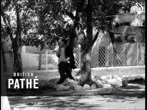 Rishikesh - Beatles With The Maharishi (1968)