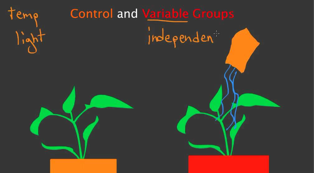 Control and Variable Groups - YouTube