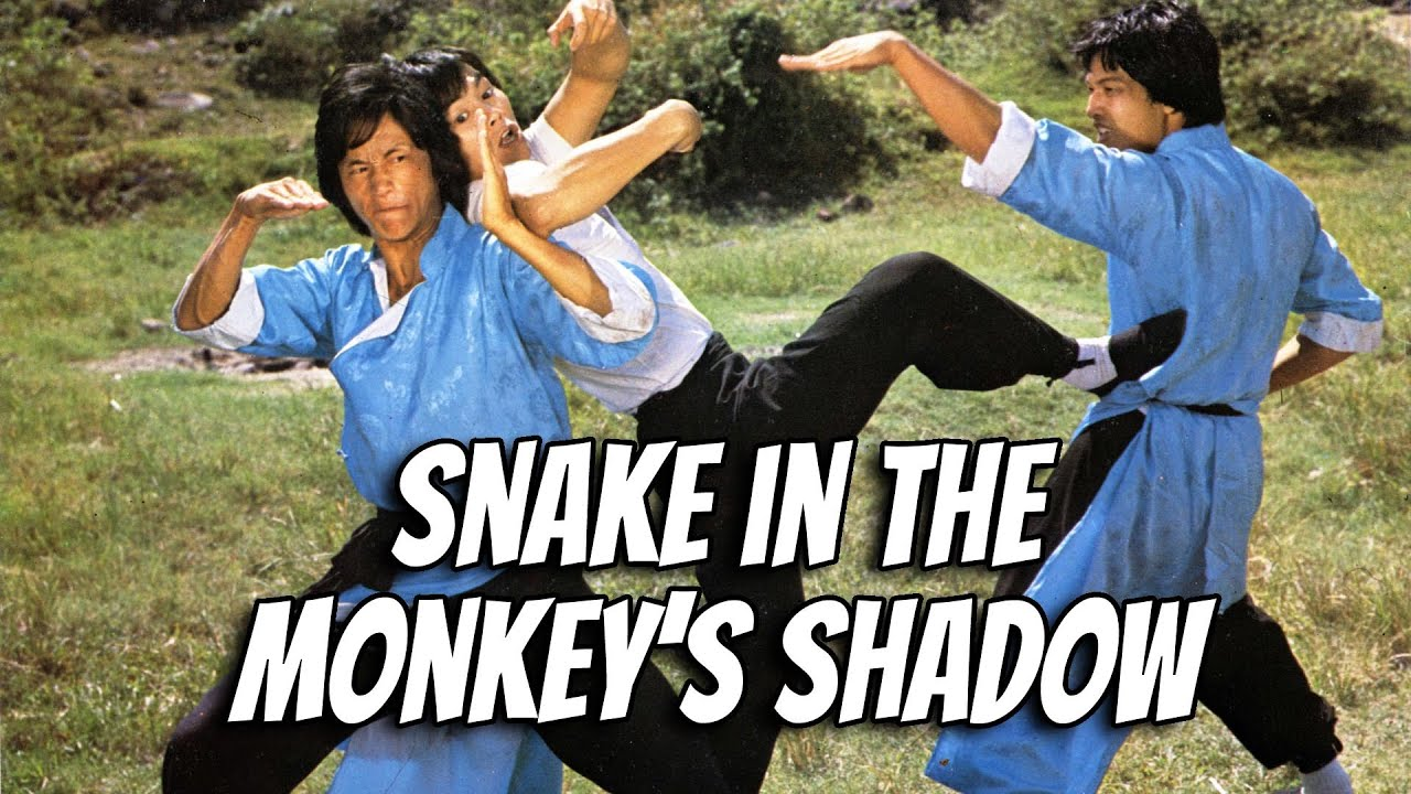 Download Wu Tang Collection - Snake in the Monkey's Shadow (widescreen)