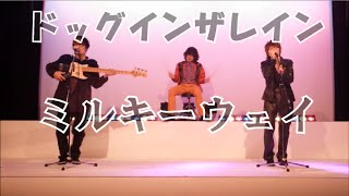 ドッグインザレイン ≪メンバー≫ 【ボーカル】近藤真也(エレファンツ兵庫...