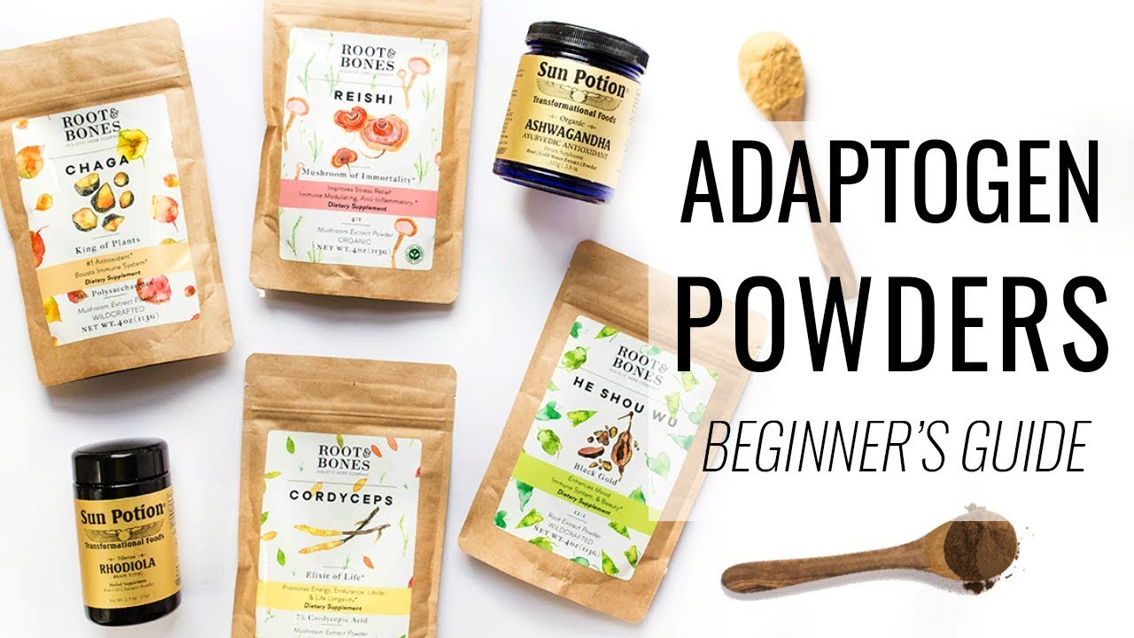 BEGINNER'S GUIDE TO ADAPTOGENS | reduce stress, boost immunity & more