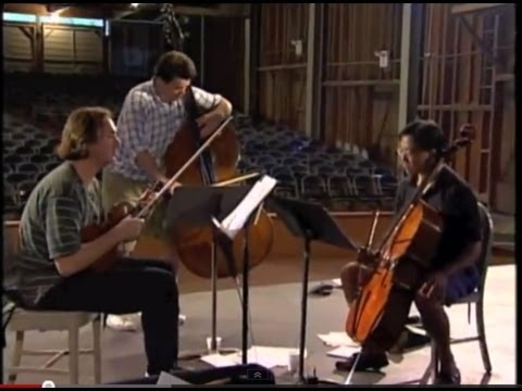 """Caprice for Three"" The three fast bows - Mark O'Connor, Yo-Yo Ma & Edgar Meyer"
