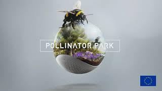 Pollinator Park - official launch