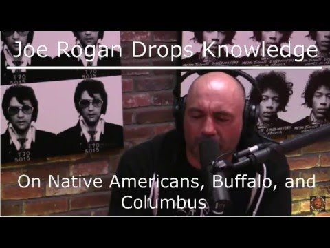 Joe Rogan Experience #784 - Native Americans, Buffalo, and Columbus Day