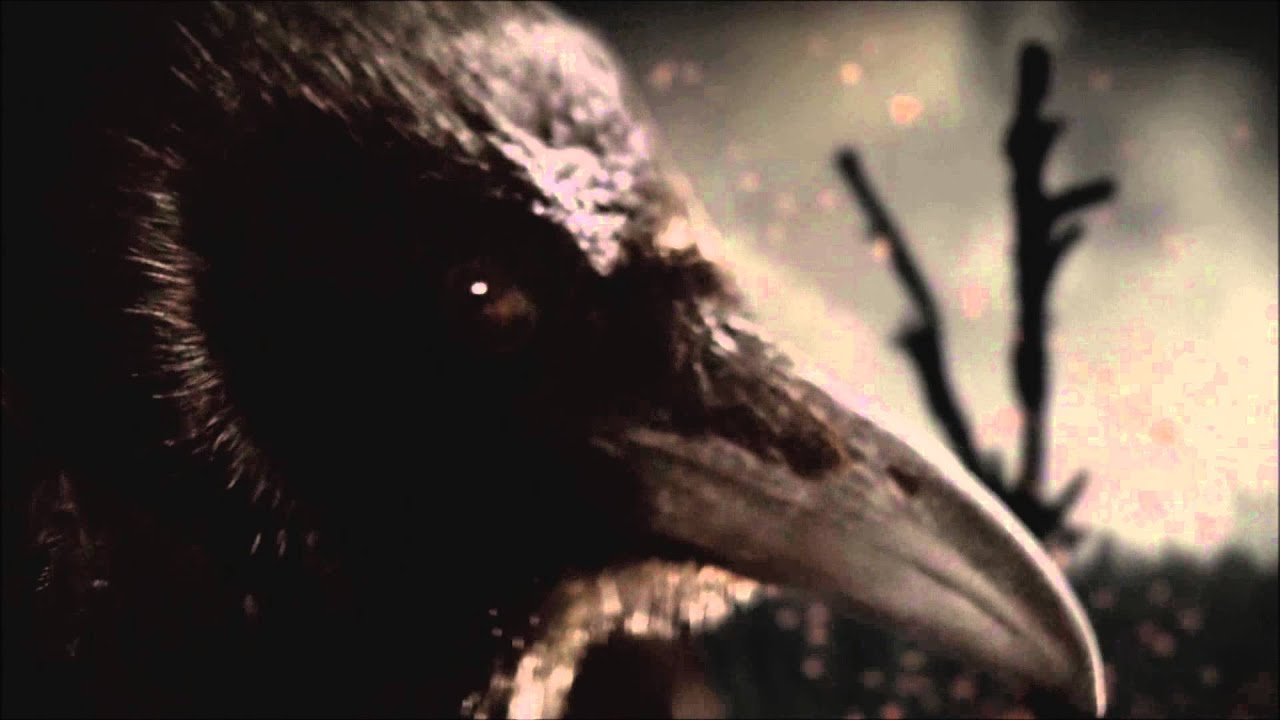 Full Hd Wallpaper Search Vikings Intro If I Had A Heart Fever Ray Hd 1080p Youtube