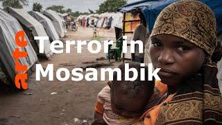 Mosambik: Wieder Terror im Namen Allahs   ARTE Reportage