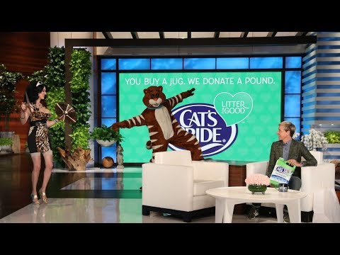 Ellen Reveals the Scariest Cat Ever for Cat Week