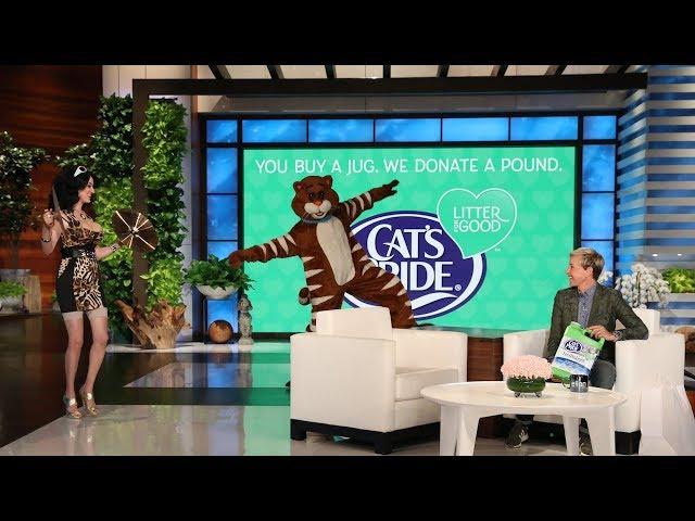 Ellen Reveals the Scariest Cat Ever for Cat Week