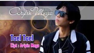 Aripin Mega - Toel Toel Mp3