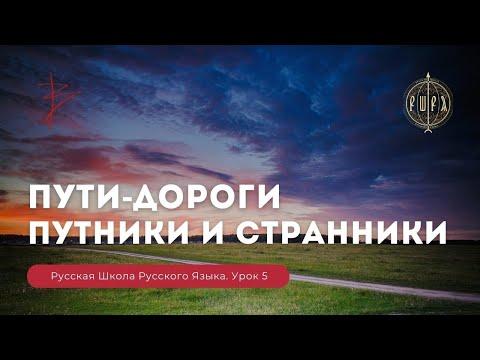 Скачать видеоуроки русского языка виталия сундакова торрент