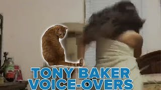 OFFICIAL Tony Baker Voice Over - Cats Be Judging You