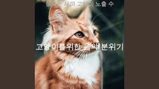 고양이 훈련의 시적 리듬