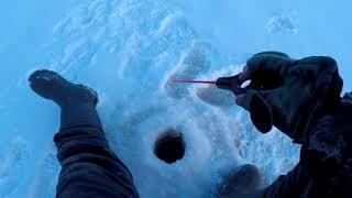Зимняя рыбалка 2019!!!Белохолуницкий пруд!!!