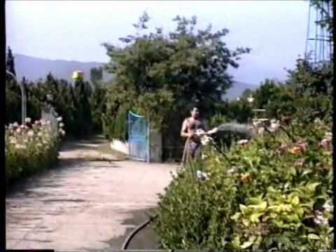 Iranian 1995