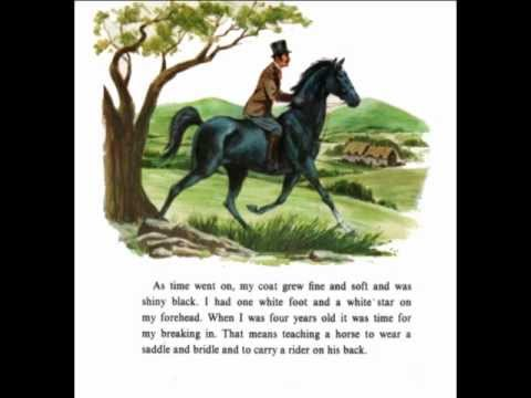 has book report on black beauty Black beauty, novel by anna sewell published in 1877, only five months before  her death, has  black beauty is a classic book that teaches big life principles.