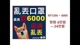 대만뉴스 : 대만 코로…