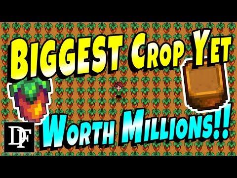 Biggest Crop Yet! w/ Garden Pots! - Stardew Valley 1.3