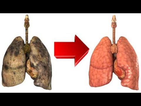 How To Naturally Cleanse And Purify Your Lungs For Better Lifestyle