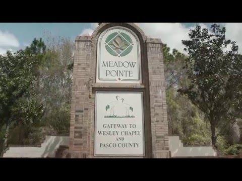 Meadow Pointe Wesley Chapel Florida