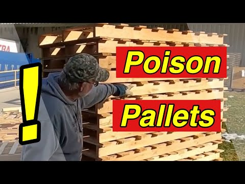 pallet-wood-projects---are-pallets-safe-to-use-for-projects?