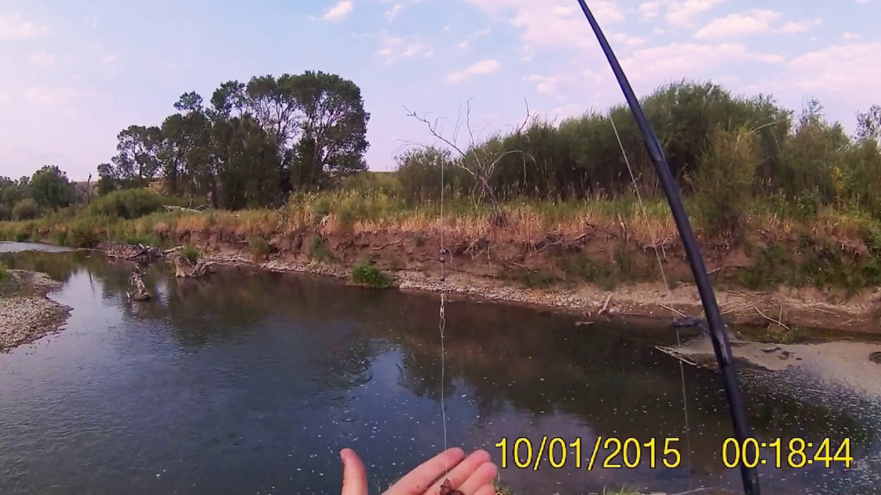 Fishing small creek youtube for Small creek fishing