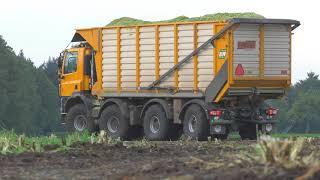 Tatra Agritruck  in de mais JWD. Markvoort