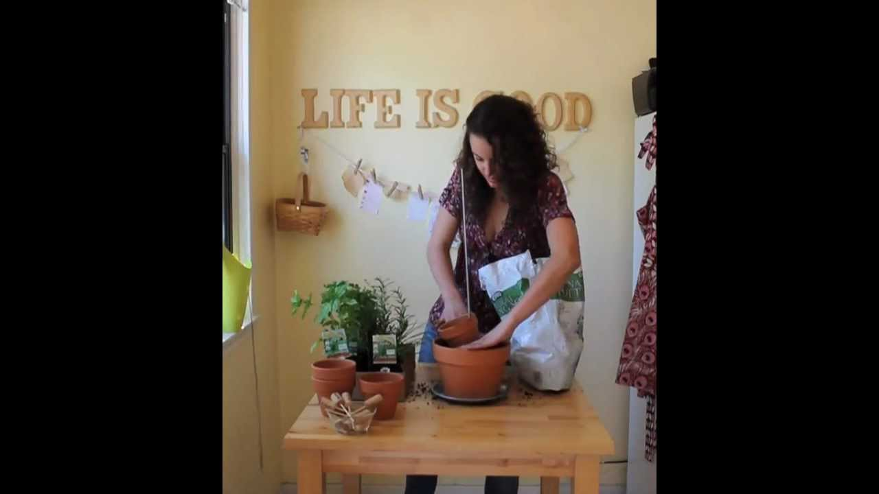 DIY Vertical Herb Garden Tutorial - YouTube