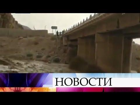 В Иордании в районе Мертвого моря школьный автобус смыло потоком воды.