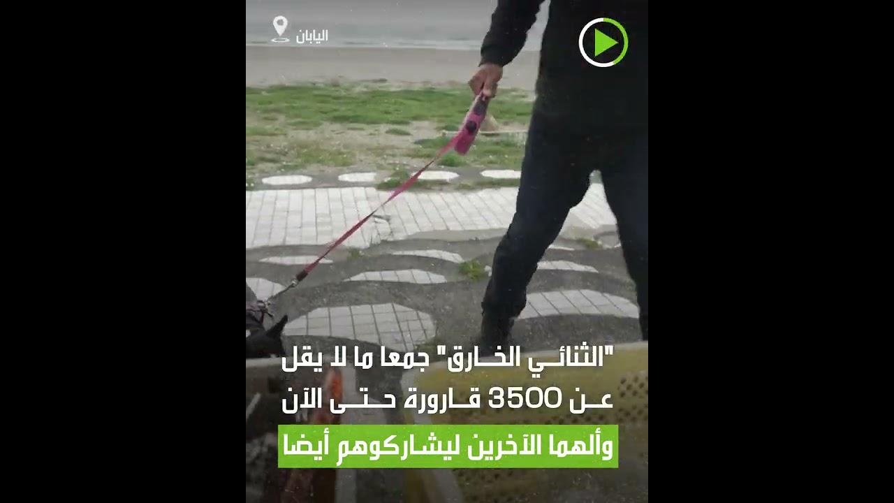 كلب صغير وصاحبه ينظفان شواطئ اليابان!  - نشر قبل 3 ساعة