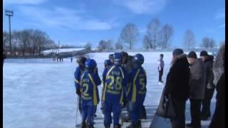 Турнир по хоккею с мячом прошел в Биробиджане