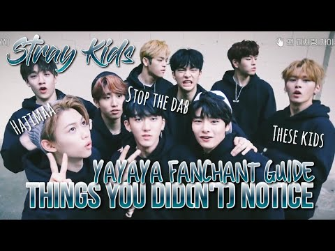 THINGS YOU DID(N'T) NOTICE in YAYAYA Fanchant Guide | Stray Kids