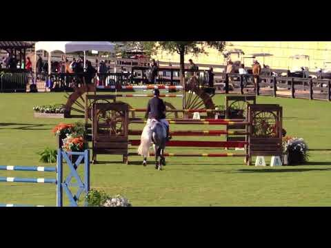 Bellefleur PS Z & Mclain Ward - Tryon, Open Jumper 1.40 class jump off