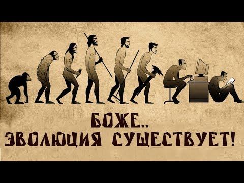 Что такое эволюция? Биолог Евгений Шмуклер на QWERTY