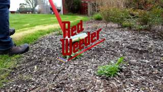 Red Weeder Product Video