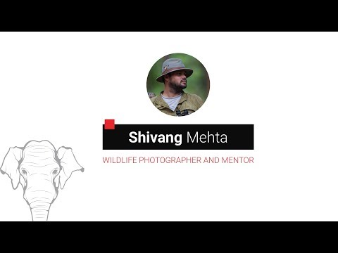 Shivang Mehta - Wildlife Tourism: A New Perspective