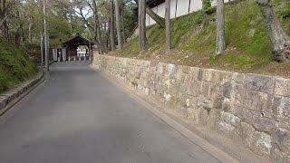 京都 春の東福寺 Tofukuji (temple) in spring, Kyoto