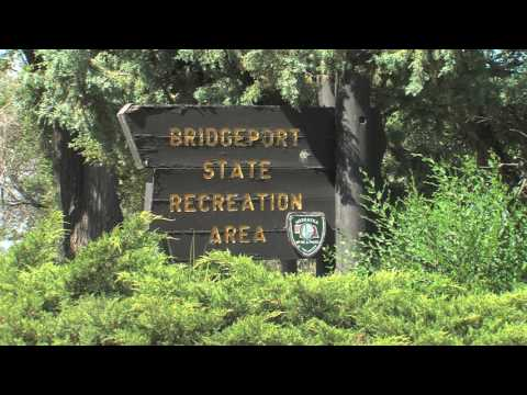 Bridgeport State Recreation Area