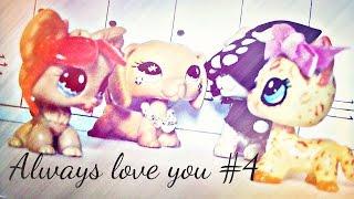 Littlest Pet Shop: Always love you #4 (Klątwa Huntera)