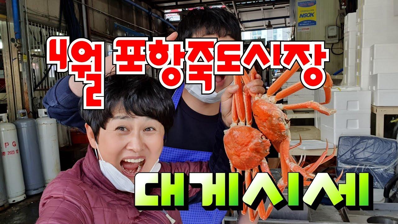 [수산물] 4월 포항죽도시장 대게시세 알아보기