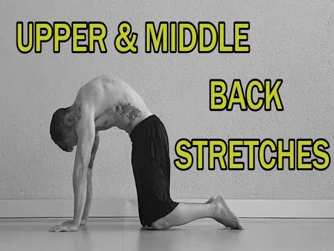 THE COMPLETE STRETCHING VIDEO GUIDE || UPPER AND MIDDLE BACK STRETCHES